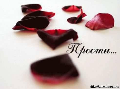 http://chkatylka.ucoz.ru/_bl/2/73415773.jpeg
