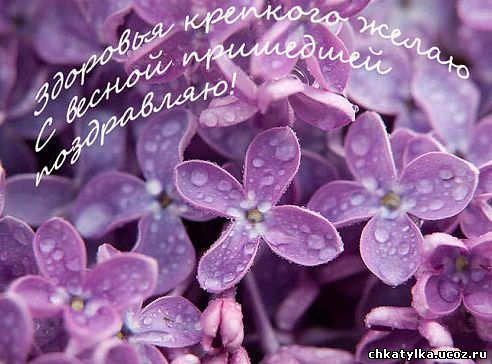 http://chkatylka.ucoz.ru/getimage_s_vesnoj.jpeg
